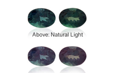 This rare alexandrite oval pair displays a vibrant color change